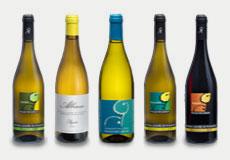 Poggio dei Gorleri - Wines